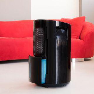 Deshumidificador Cecotec BigDry 9000 Professional Black 4,5L Negro